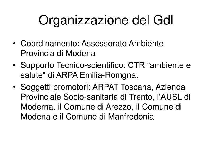 Organizzazione del Gdl