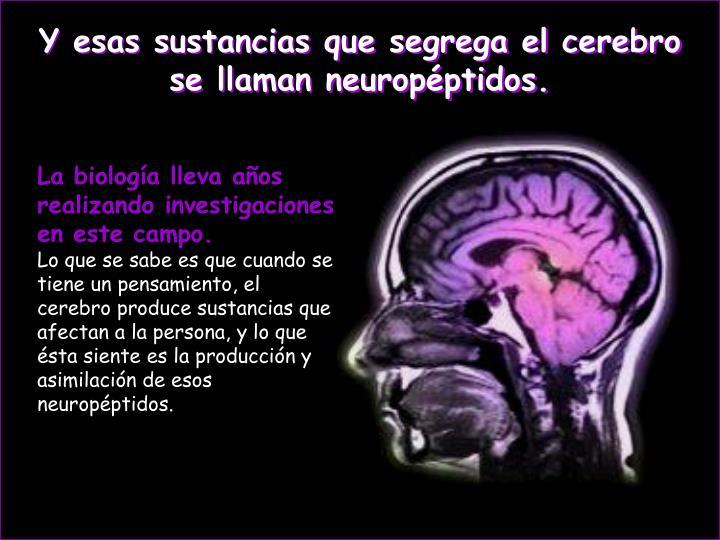 Y esas sustancias que segrega el cerebro se llaman neuropéptidos.