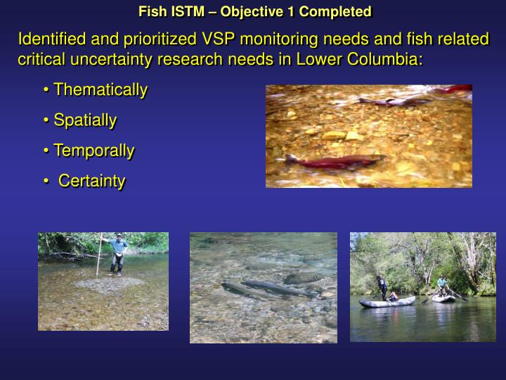 Fish ISTM – Objective 1 Completed