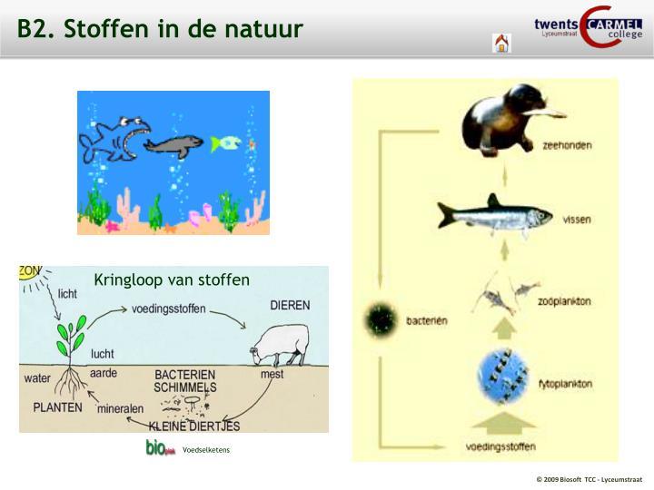 B2. Stoffen in de natuur