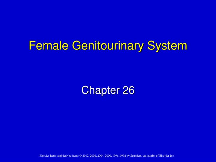 Female genitourinary system
