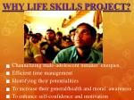 why life skills project