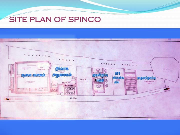 Site plan of spinco