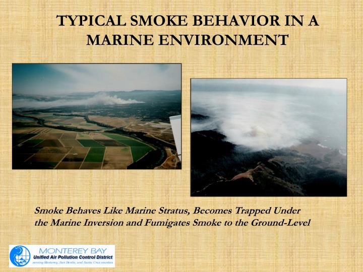 Typical smoke behavior in a marine environment