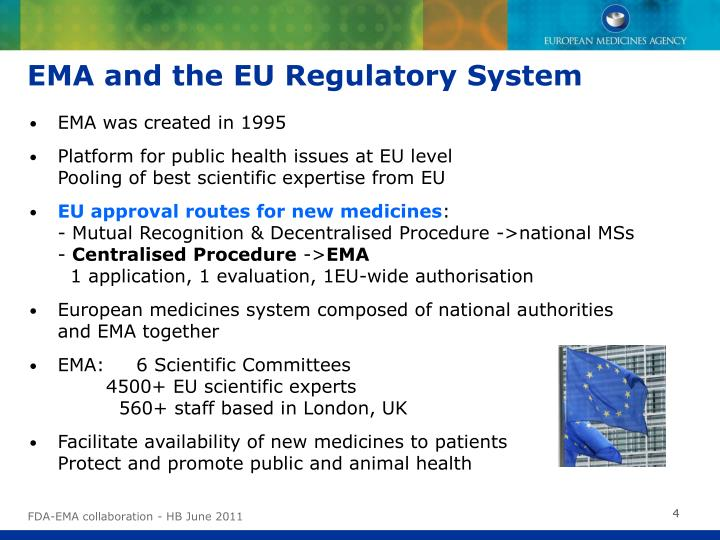 EMA and the EU Regulatory System