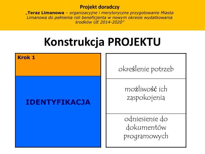 Projekt doradczy