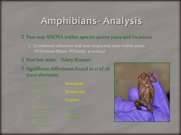 Amphibians- Analysis