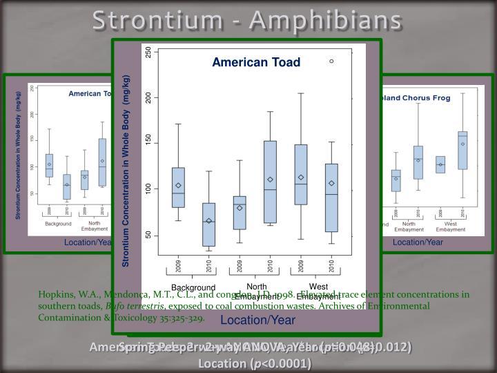 Strontium - Amphibians