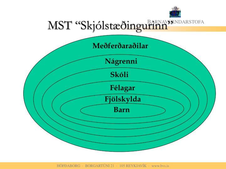 """MST """"Skjólstæðingurinn"""""""