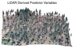 lidar derived predictor variables