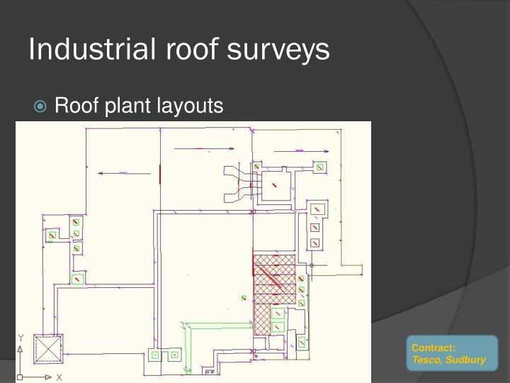 Industrial roof surveys