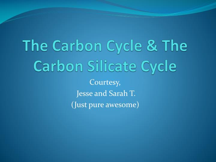 the carbon cycle the carbon silicate cycle