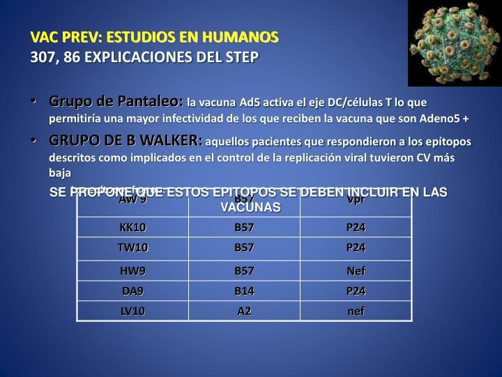 VAC PREV: ESTUDIOS EN HUMANOS