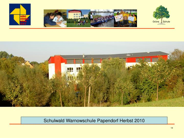 Schulwald Warnowschule Papendorf Herbst 2010