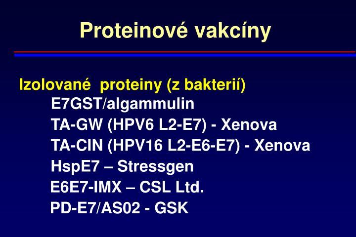 Proteinové vakcíny