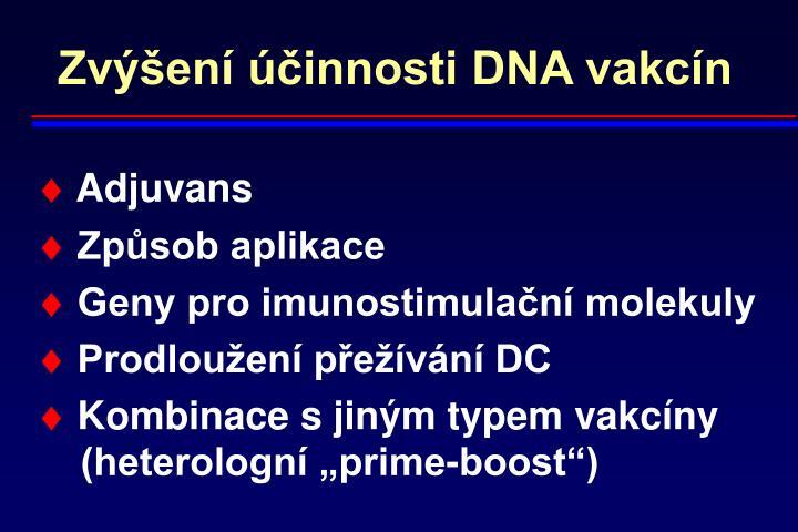 Zvýšení účinnosti DNA vakcín