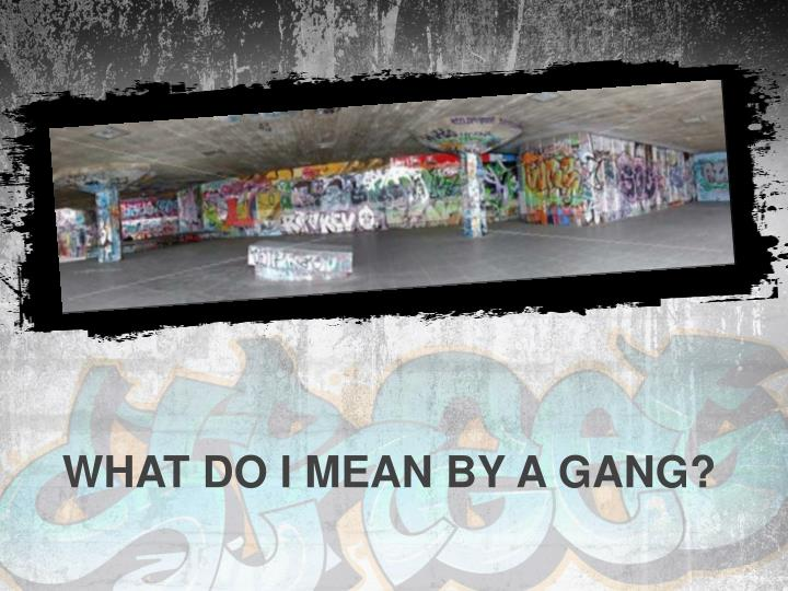 What do I mean by a gang?