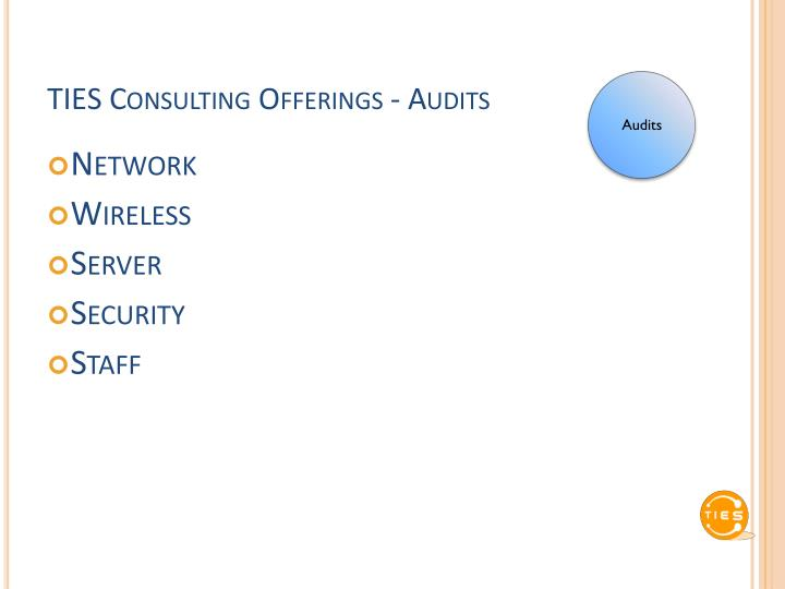 TIES Consulting Offerings - Audits