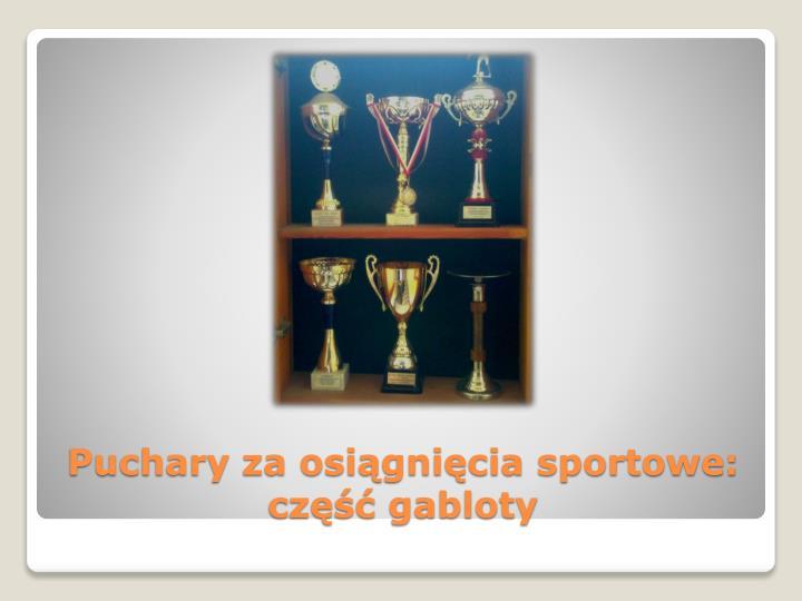 Puchary za osiągnięcia sportowe: część gabloty