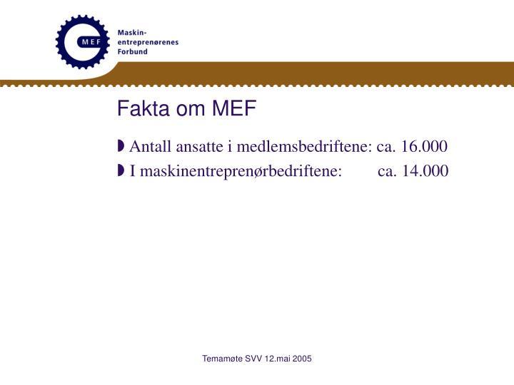Fakta om MEF