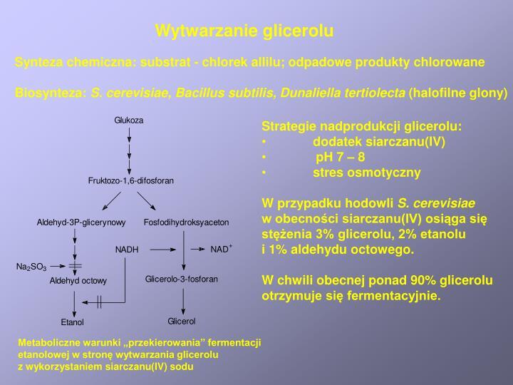 Wytwarzanie glicerolu