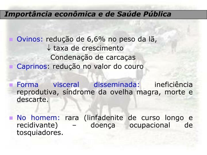 Importância econômica e de Saúde Pública