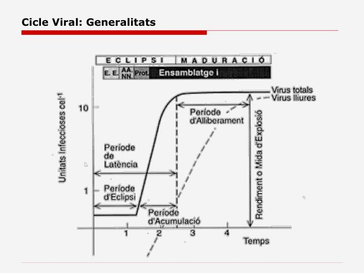 Cicle Viral: Generalitats