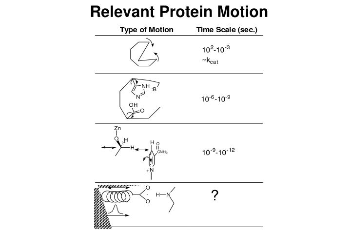 Relevant Protein Motion