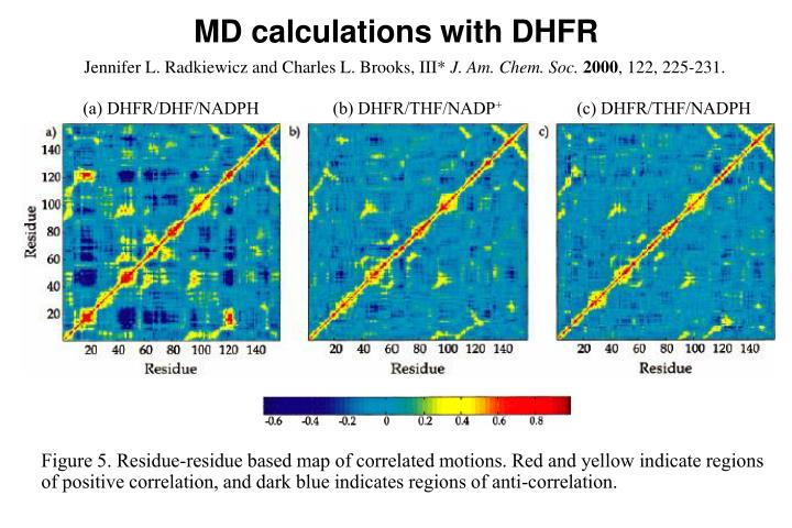 MD calculations with DHFR