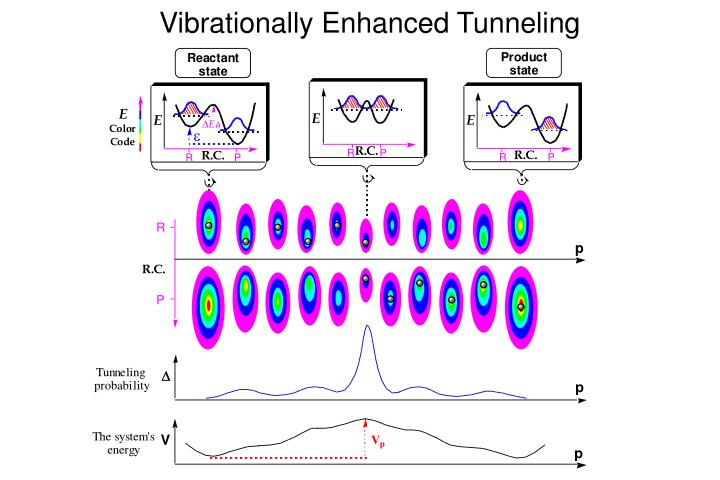 Vibrationally Enhanced Tunneling