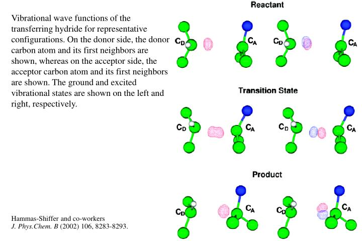 Vibrational wave functions of the transferring hydride for representative configurations. On the donor side, the donor carbon atom and its first neighbors are shown, whereas on the acceptor side, the acceptor carbon atom and its first neighbors are shown. The ground and excited vibrational states are shown on the left and right, respectively.