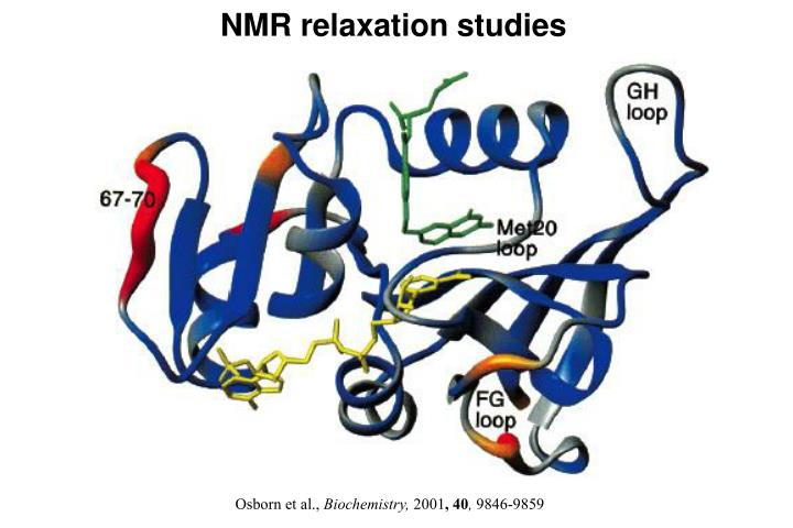 NMR relaxation studies