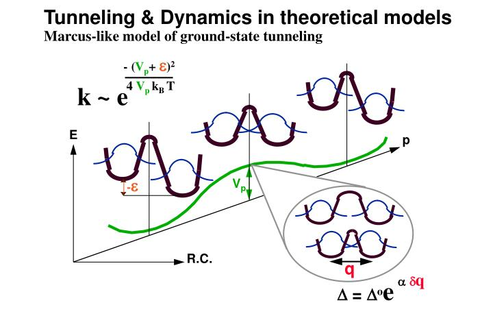 Tunneling & Dynamics in theoretical models