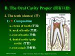 b the oral cavity proper