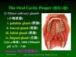 the oral cavity proper5
