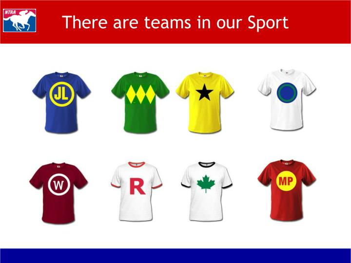 There are teams in our Sport