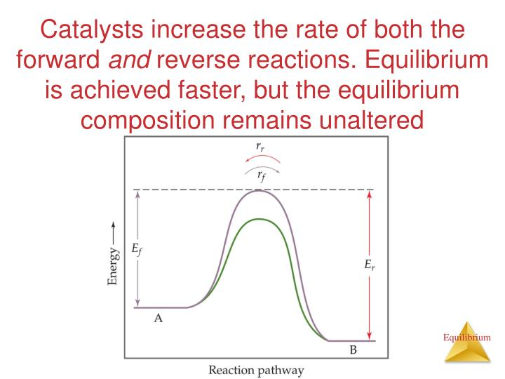 Catalysts increase the rate of both the forward