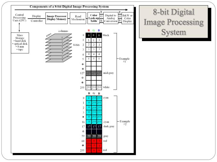8-bit Digital Image Processing System