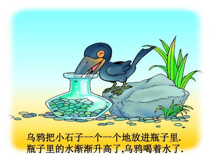 乌鸦把小石子一个一个地放进瓶子里