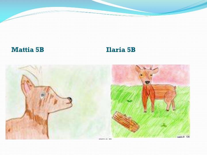 Mattia 5B