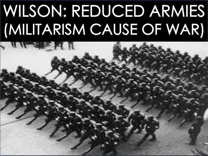 WILSON: REDUCED ARMIES