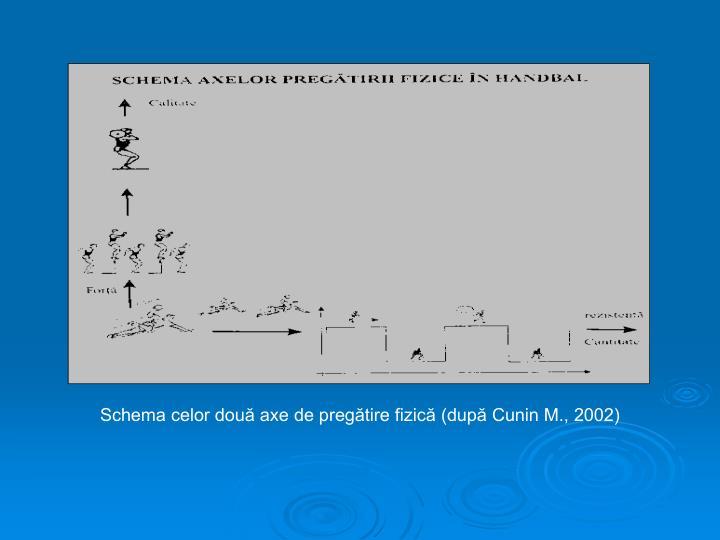 Schema celor două axe de pregătire fizică (după Cunin M., 2002)
