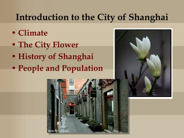 An Introduction to Shanghai