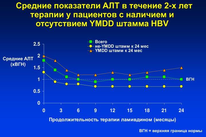 AT   2-         YMDD  HBV