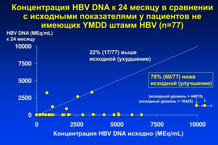 HBV DNA  24           YMDD  HBV (n=77)