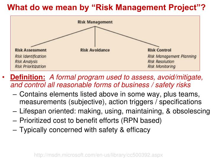 "What do we mean by ""Risk Management Project""?"