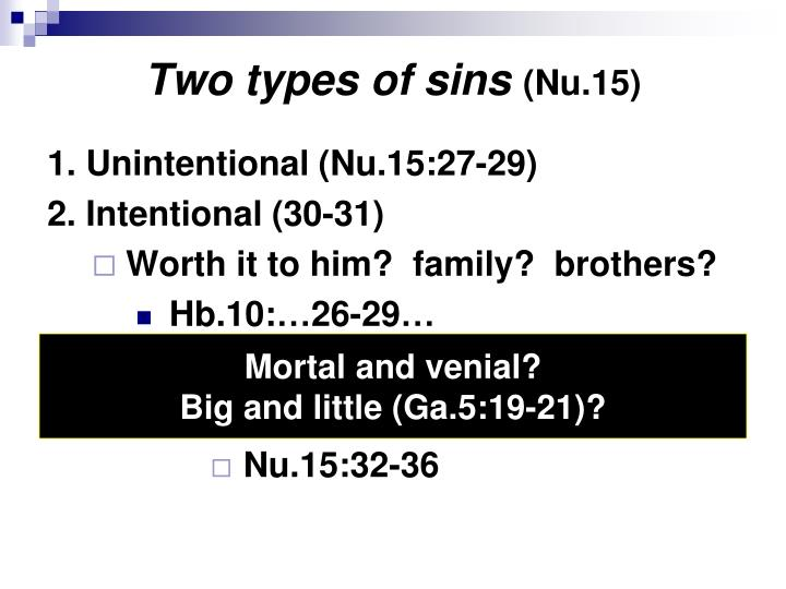 Two types of sins nu 15