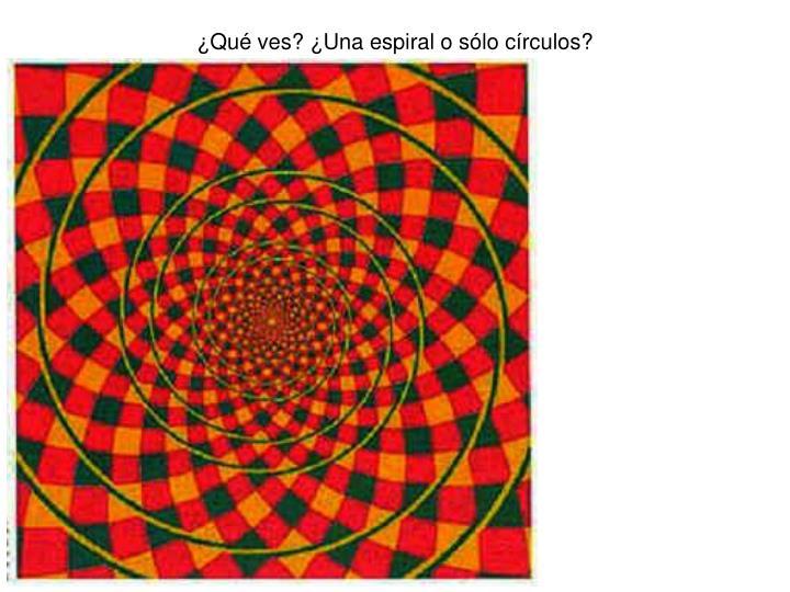 ¿Qué ves? ¿Una espiral o sólo círculos?