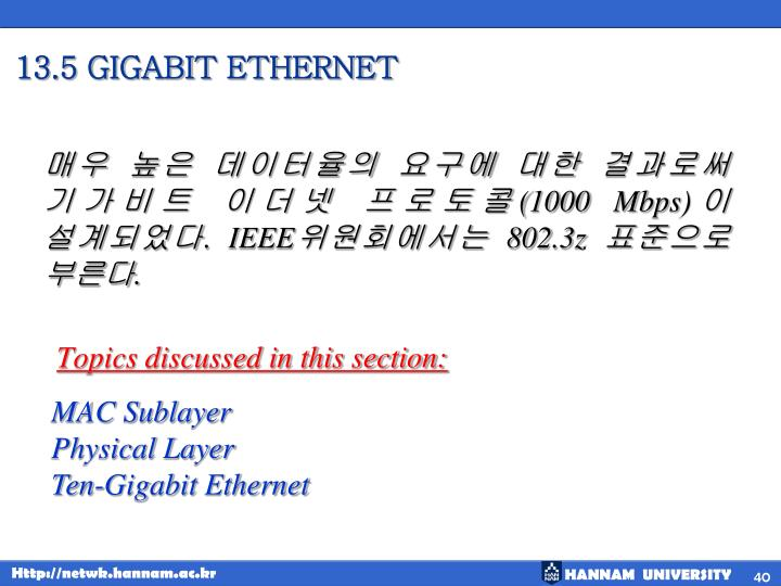 13.5 GIGABIT ETHERNET