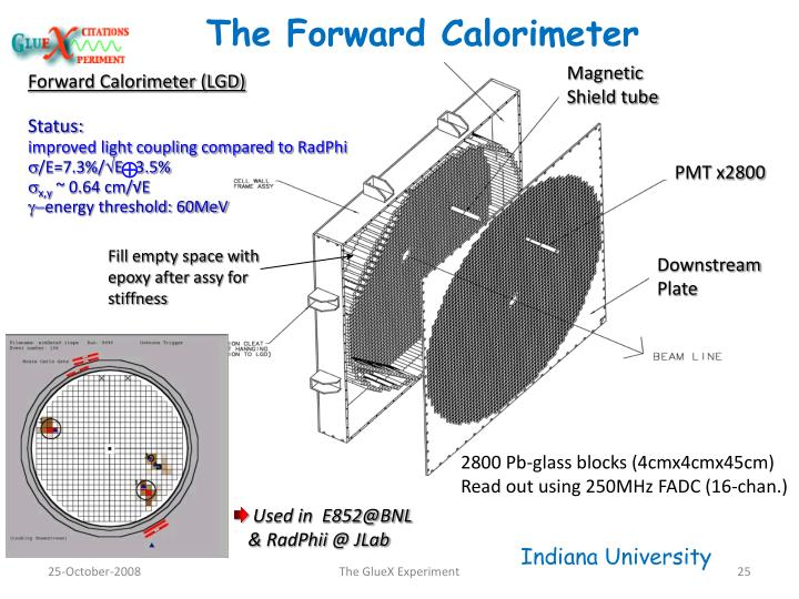 Forward Calorimeter (LGD)
